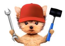 Lustiger Hund mit dem Schlüssel und Hammer lokalisiert auf Weiß Stockbild