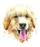 Lustiger Hund nette gezeichnete Illustration des Welpenaquarells Hand lizenzfreie abbildung