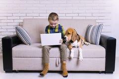 Lustiger Junge, der einen Laptop mit einem Spürhundhund spielt Lizenzfreie Stockbilder