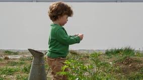 Lustiger Junge mit der grünen Strickjacke, die draußen mit altem Pitcher spielt stock video