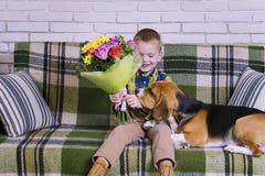 Lustiger Junge mit einem Blumenstrauß von Blumen und von Hundspürhund Lizenzfreie Stockfotografie