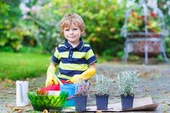 Lustiger kleiner Junge, der Blumen im Garten des Ausgangs im Garten arbeitet und pflanzt Lizenzfreies Stockbild
