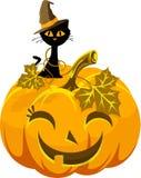 Lustiger Kürbis und Katze des Plakats im Hut Halloween Lizenzfreie Stockfotografie