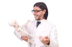 Lustiger Lehrer mit dem Skelett lokalisiert Stockfoto