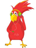 Lustiger Papagei, der Musik hört. Stockbild