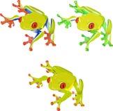 Lustiger rotäugiger Frosch näher an dem Geschenk Lizenzfreies Stockfoto