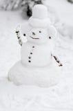 Lustiger Schneemann Stockbild