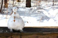 Lustiger Schneemann geschmolzen im Wald auf einer Bank stockbilder