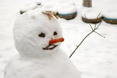 Lustiger Schneemann mit Karottewekzeugspritze. Stockbilder