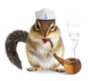 Lustiger Tierseemann, Eichhörnchen mit Tabakpfeife und Seemannhut Lizenzfreie Stockfotos