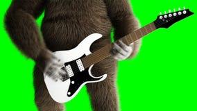 Lustiges braunes Gorillaspiel die E-Gitarre Super realistischer Pelz und Haar grüne Animation des Schirmes 4k vektor abbildung