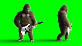 Lustiges braunes Gorillaspiel die E-Gitarre Super realistischer Pelz und Haar grüne Animation des Schirmes 4k stock abbildung