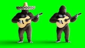 Lustiges braunes Gorillaspiel die Gitarre Super realistischer Pelz und Haar grüne Animation des Schirmes 4k vektor abbildung