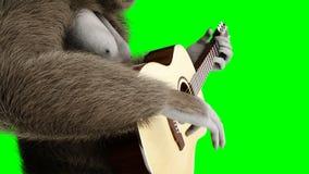Lustiges braunes Gorillaspiel die Gitarre Super realistischer Pelz und Haar grüne Animation des Schirmes 4k lizenzfreie abbildung