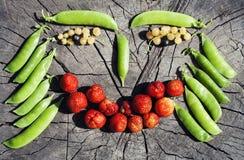 Lustiges Fruchtgesicht auf hölzernem Hintergrund Lizenzfreie Stockbilder
