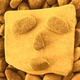 Lustiges Gesicht gemacht auf einem Strand mit Steinen und Kieseln Lizenzfreies Stockbild