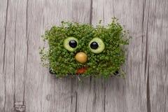 Lustiges Gesicht gemacht vom Kammsalat auf hölzernem Brett Lizenzfreie Stockbilder