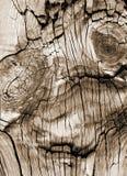 Lustiges Gesicht verwitterter Weinlese-hölzerner Planken-Boden-Scheunen-Schreibtisch Stockfotografie