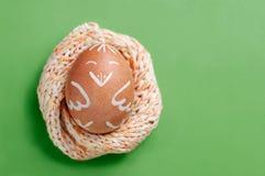 Lustiges Huhn Ostereies, das in gestricktes Nest gegen grünen Hintergrund liegt Stockfotografie
