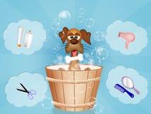 lustiges Hundepflegen lizenzfreie abbildung