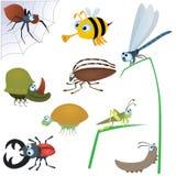 Lustiges Insekt gesetztes #2 lizenzfreie abbildung