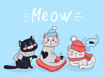 Lustiges Katzen-Vektor-Konzept im flachen Design Lizenzfreies Stockbild