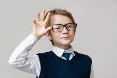 Lustiges Kind Porträt des hübschen lächelnden kleinen intelligenten Schülers in den Gläsern Gegenstände über Weiß stockfotos