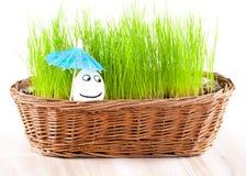 Lustiges lächelndes Mannei unter Regenschirm im Korb mit Gras. Sonnebad. Stockfoto