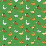 Lustiges nahtloses Muster mit Gänsen, Enten, Hahnen, Stockfoto