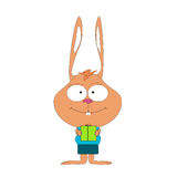 Lustiges nettes kleines Kaninchen ohrig Lizenzfreies Stockbild