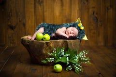 Lustiges neugeborenes kleines Baby in einem Kostüm des Igelen süß schlafend auf dem Stumpf Lizenzfreies Stockbild