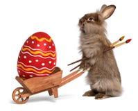 Lustiges Ostern-Häschen mit einer Schubkarre und einem roten Ostern z.B. lizenzfreies stockfoto