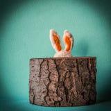 Lustiges Ostern-Kaninchen Stockbilder