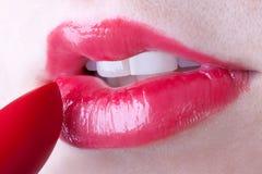 Lustre de languette Photos libres de droits