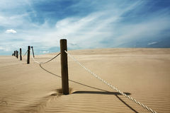 Lustre dunas na cor Imagens de Stock