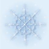 Lustro di un fiocco di neve magnifico Immagine Stock Libera da Diritti