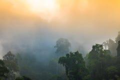 Lustro dorato del cielo comunque la nebbia sopra l'alta montagna Fotografia Stock