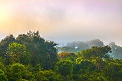 Lustro dorato del cielo comunque la nebbia sopra l'alta montagna Immagini Stock Libere da Diritti