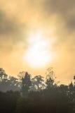 Lustro dorato del cielo comunque la nebbia sopra l'alta montagna Fotografie Stock Libere da Diritti