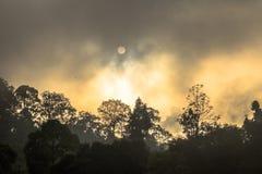 Lustro dorato del cielo comunque la nebbia sopra l'alta montagna Immagine Stock