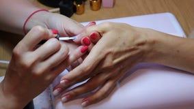 Lustro fêmea do prego Manicuro que aplica o verniz branco no prego do polegar durante o passo final de seu trabalho video estoque