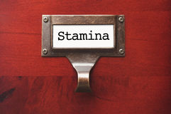 Lustrous Wooden Cabinet with Stamina File Label Stock Photography
