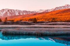 Lustrzana powierzchnia jezioro w halnej dolinie Obrazy Stock