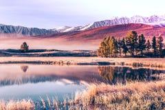 Lustrzana powierzchnia jezioro w halnej dolinie Fotografia Stock