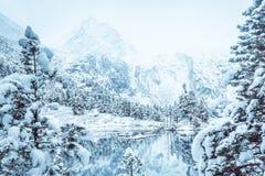 Lustrzana powierzchnia zimy jezioro z pasmem górskim Fotografia Royalty Free