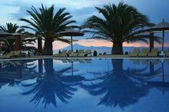 lustrzani drzewka palmowe zdjęcie royalty free