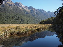 Lustrzani Jeziora Nowa Zelandia Zdjęcia Stock
