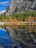 Lustrzani jeziorni odbicia Zdjęcie Royalty Free