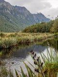 Lustrzany jezioro na sposobie milford dźwięk zdjęcia royalty free