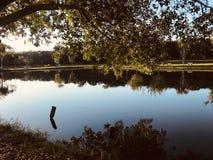 Lustrzany jezioro zdjęcie royalty free